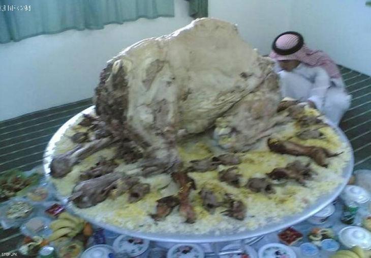 Stuffed camel