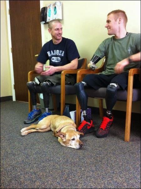 Faith, Two-Legged Dog