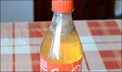 You May Never Drink Coke Again After Watching This Experiment