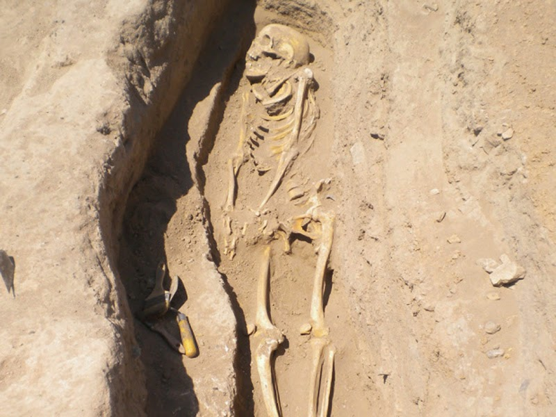 A skeleton in a grave in northern Syria in 2010 by Gil Stein/Oriental Institute, University of Chicago