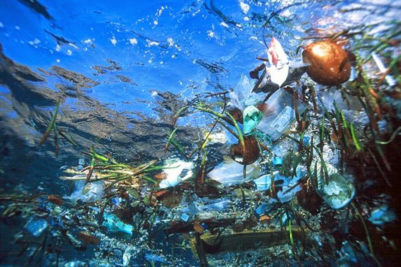 Plastics In The Ocean Are Disappearing Mysteriously