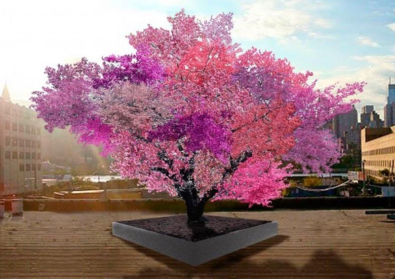 Tree of 40 Fruit.
