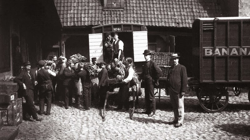 1905, first bananas in Norway