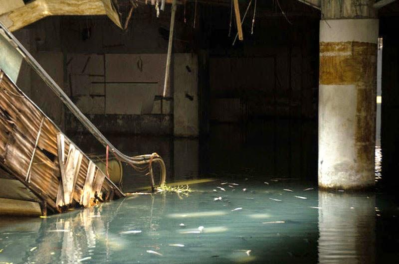 abandoned mall in Bangkok, Turned in to urban aquarium