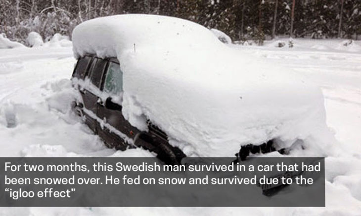 """Swedish man survived in a car by """"igloo effect"""""""
