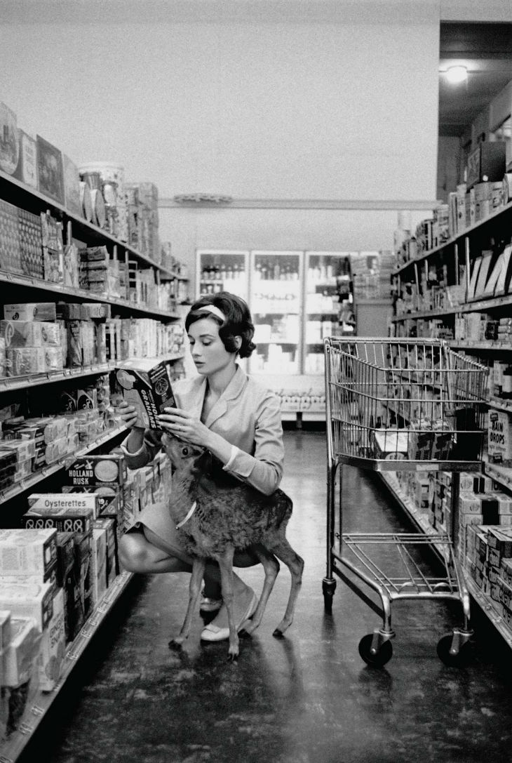 "Audrey Hepburn shopping with her pet deer ""Ip"" in Beverly Hills, CA, 1958."
