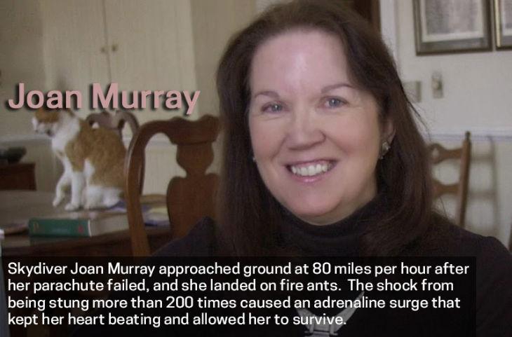 survivor Joan Murray