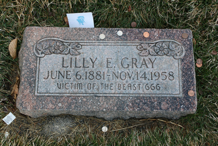 Lilly E Gray