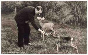 hitler against animal cruelty