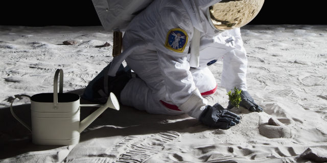 NASA plans to grow plants on the Moon