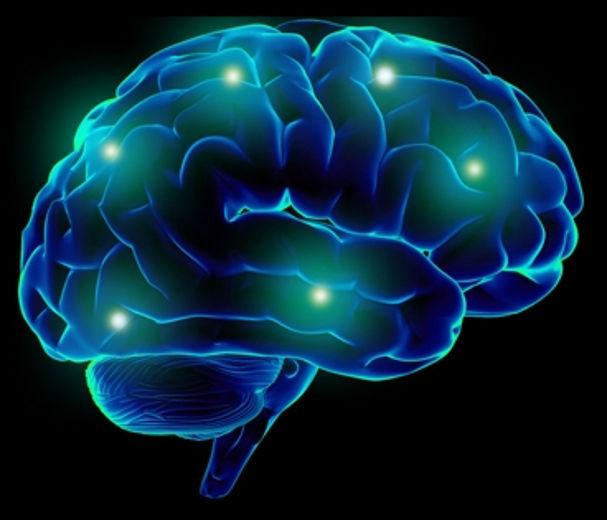 music on brain