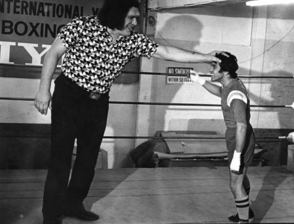 Andre the giant was huge