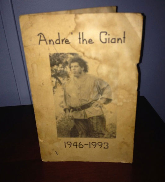 Andre the giant cremated
