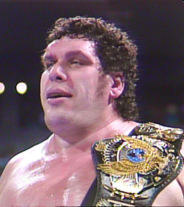 Andre the giant WWE Hall of Fame