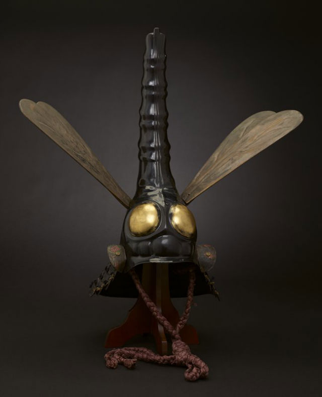 Helmet in dragonfly shape