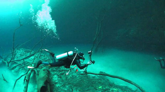 The underwater river of Cenote Angelita