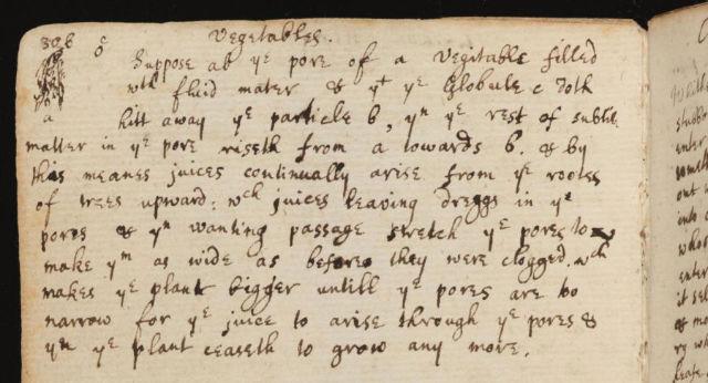 Isaac Newton Transpiration Notes