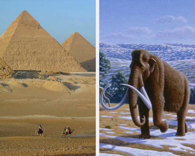 the Great Pyramids and Woolly Mammoths