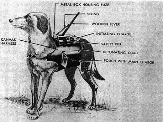 Anti-tank dog backfire