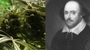 cannabis found from Shakespeare's garden