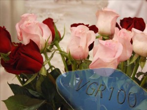 Random Fun Facts, Viagra Makes Flowers Stand Up Straight
