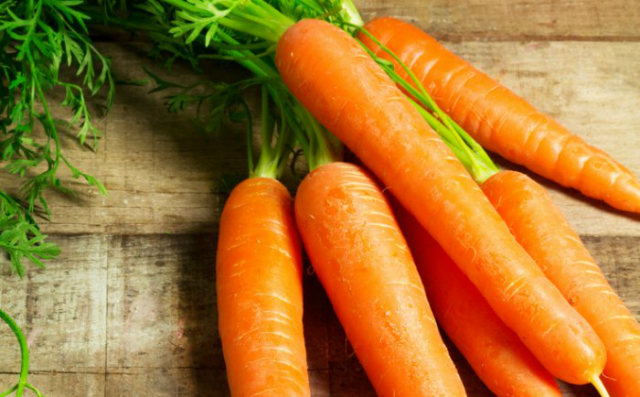 Domestication of Fruits and Vegetables, Modern Carrot