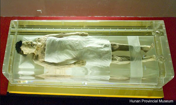 Facts About Mummies, Lady Dai Mummy