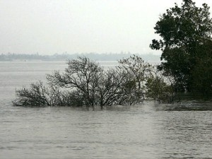 Random Fun Facts, Moore Island submerged in water