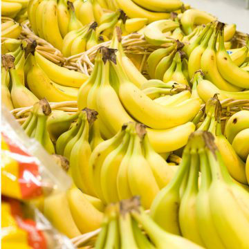 Domestication of Fruits and Vegetables, Modern Banana