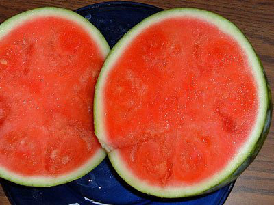 Domestication of Fruits and Vegetables, Modern watermelon