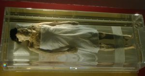 Mummies Facts