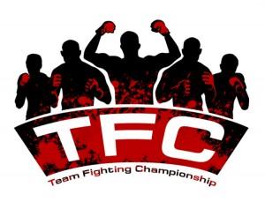 Team Fighting Championship