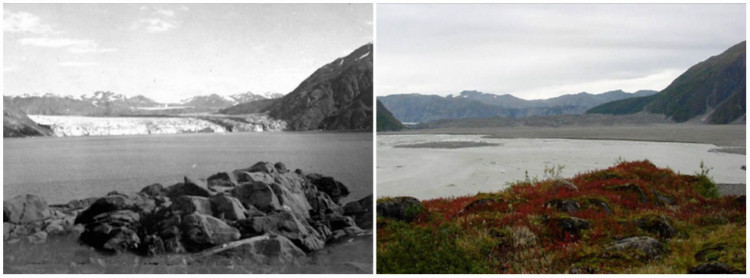 Carroll Glacier, Alaska