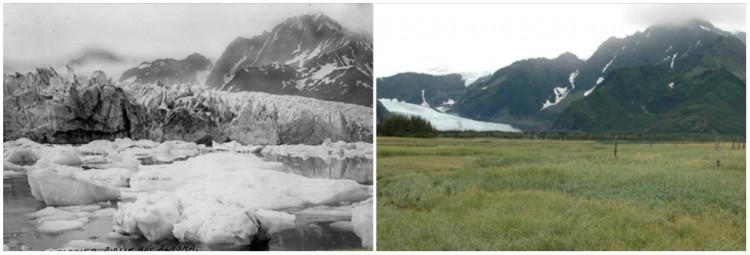 Pedersen Glacier, Alaska