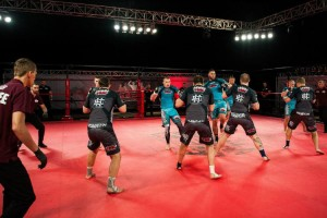 Team Fighting Championship that involves 10 fighters