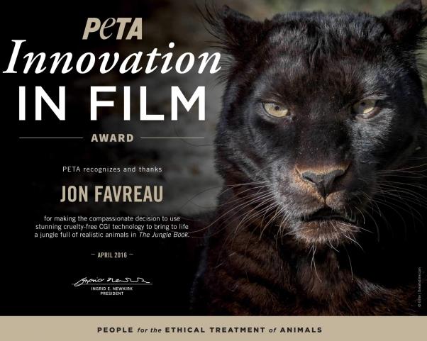 Innovation in Film trophy