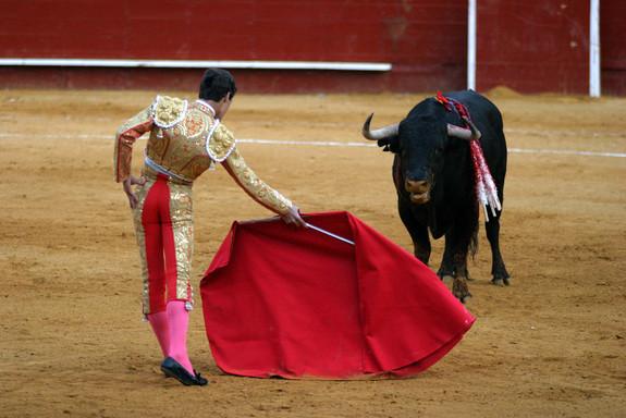 matador and bull