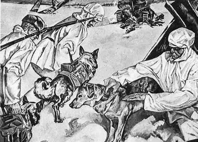 Kamikaze Canines