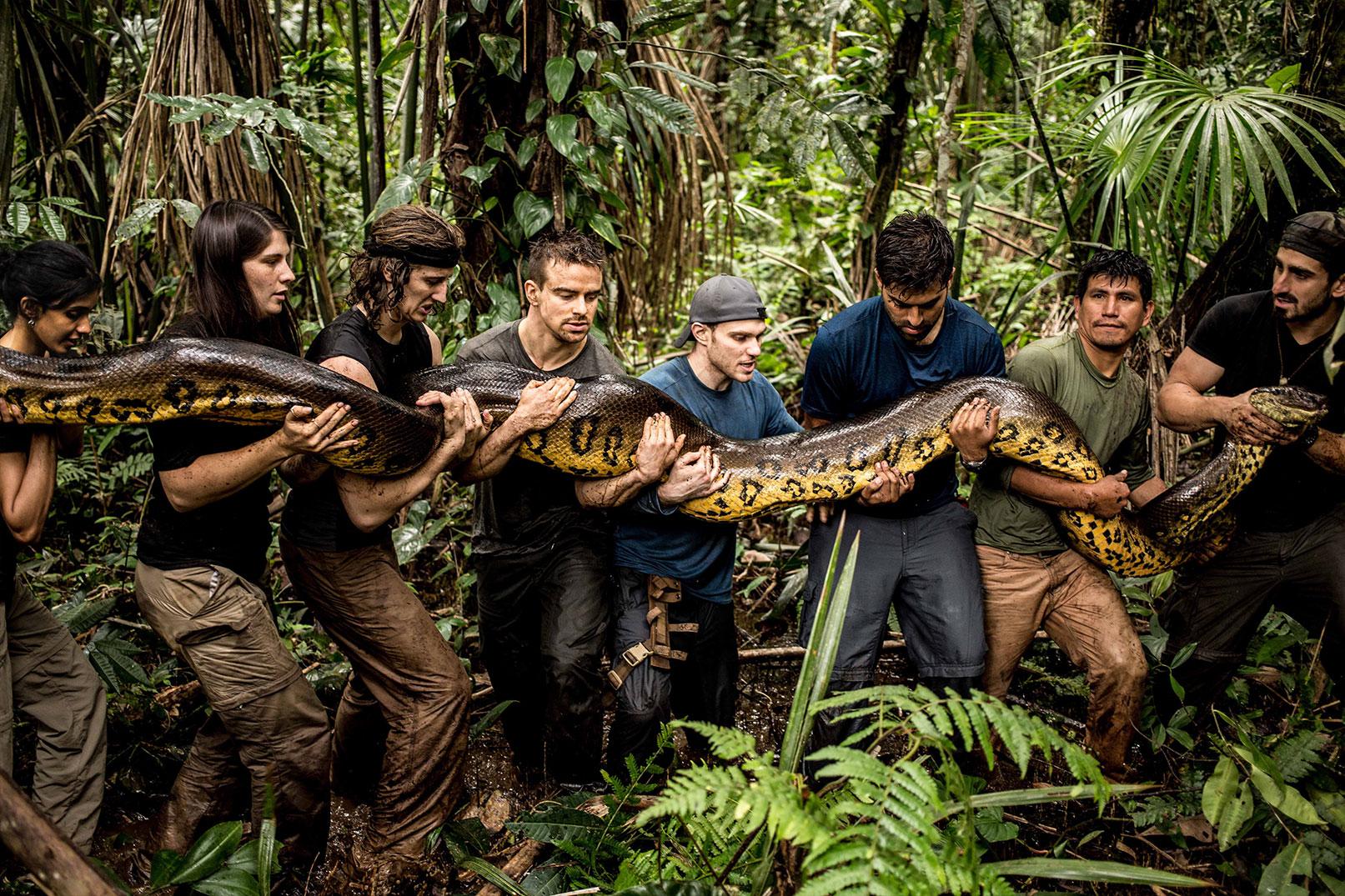 Amazonian Wildlife
