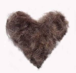 pubic hair victorian era