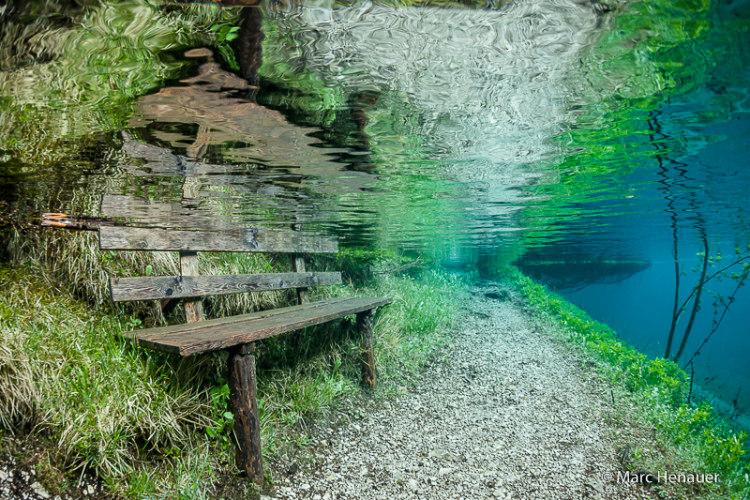 Bench Under Grüner See