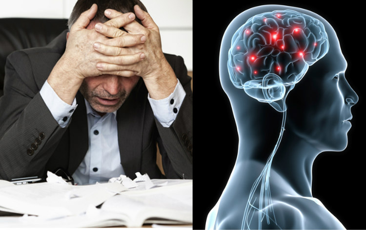 Stress and Brain Damage