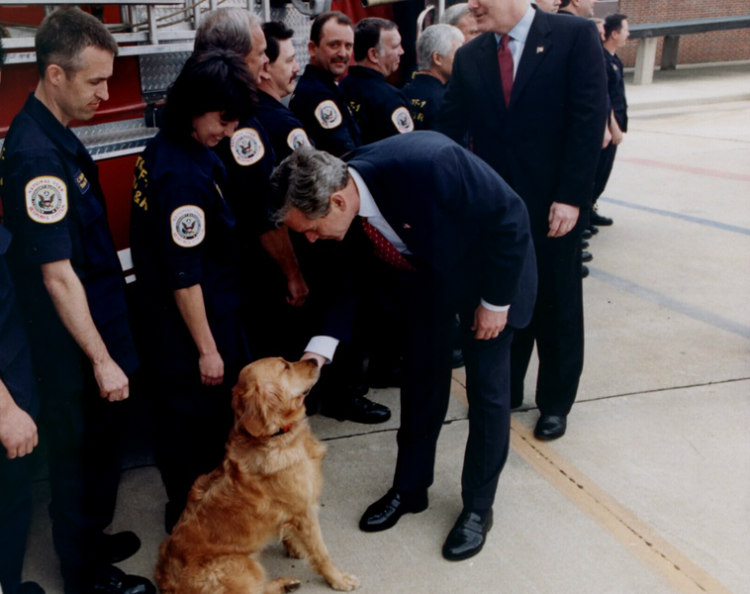 9/11 Search and Rescue Dogs