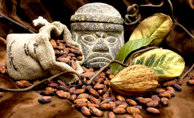 Aztec Empire - Cacao Currency