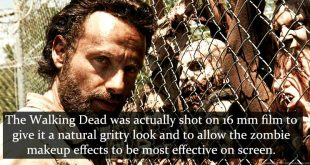 facts-about-the-walking-dead