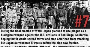 Facts About WWII