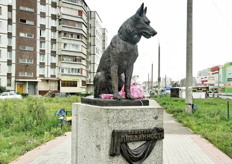 Kostya 'Loyalty' Waiting for Owners