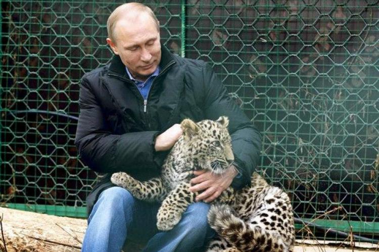 VladimirPutin With Persian Leopard