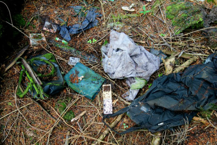 aokigahara-the-suicide-forest-3