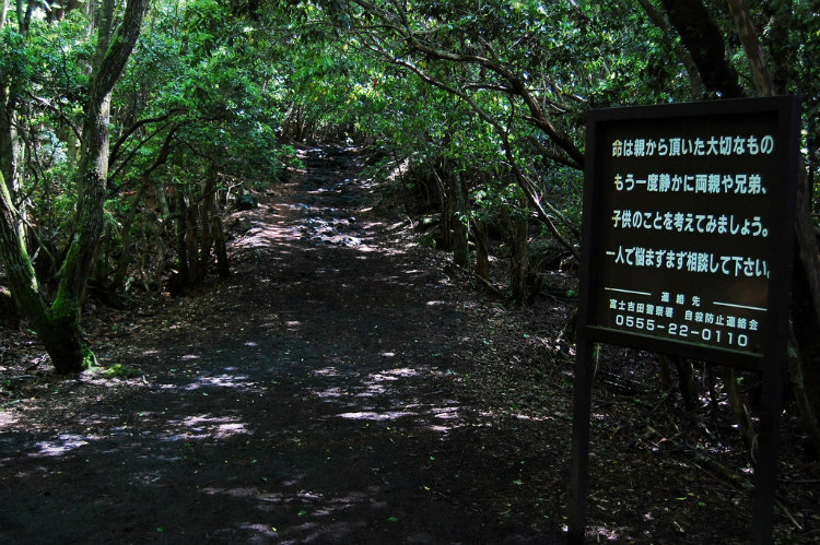 aokigahara-the-suicide-forest-7